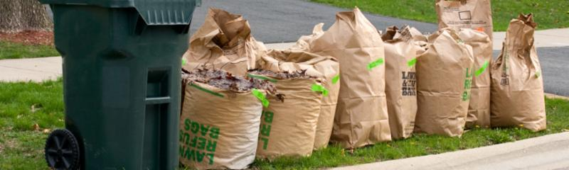 photo of yard waste bags lined up