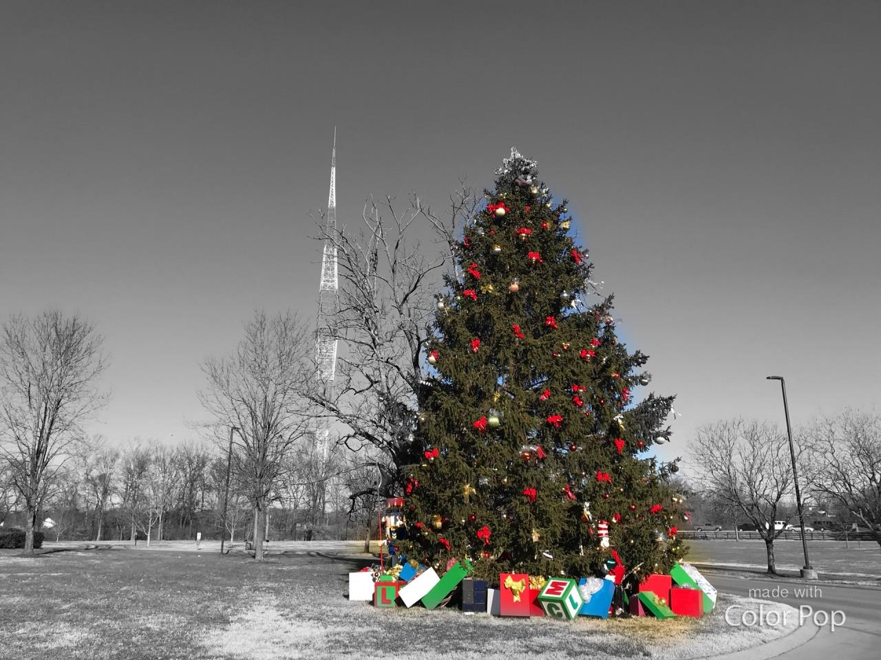black and white photo of background with christmas tree in front