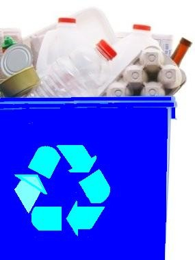Picture of a Full Recycle Bin