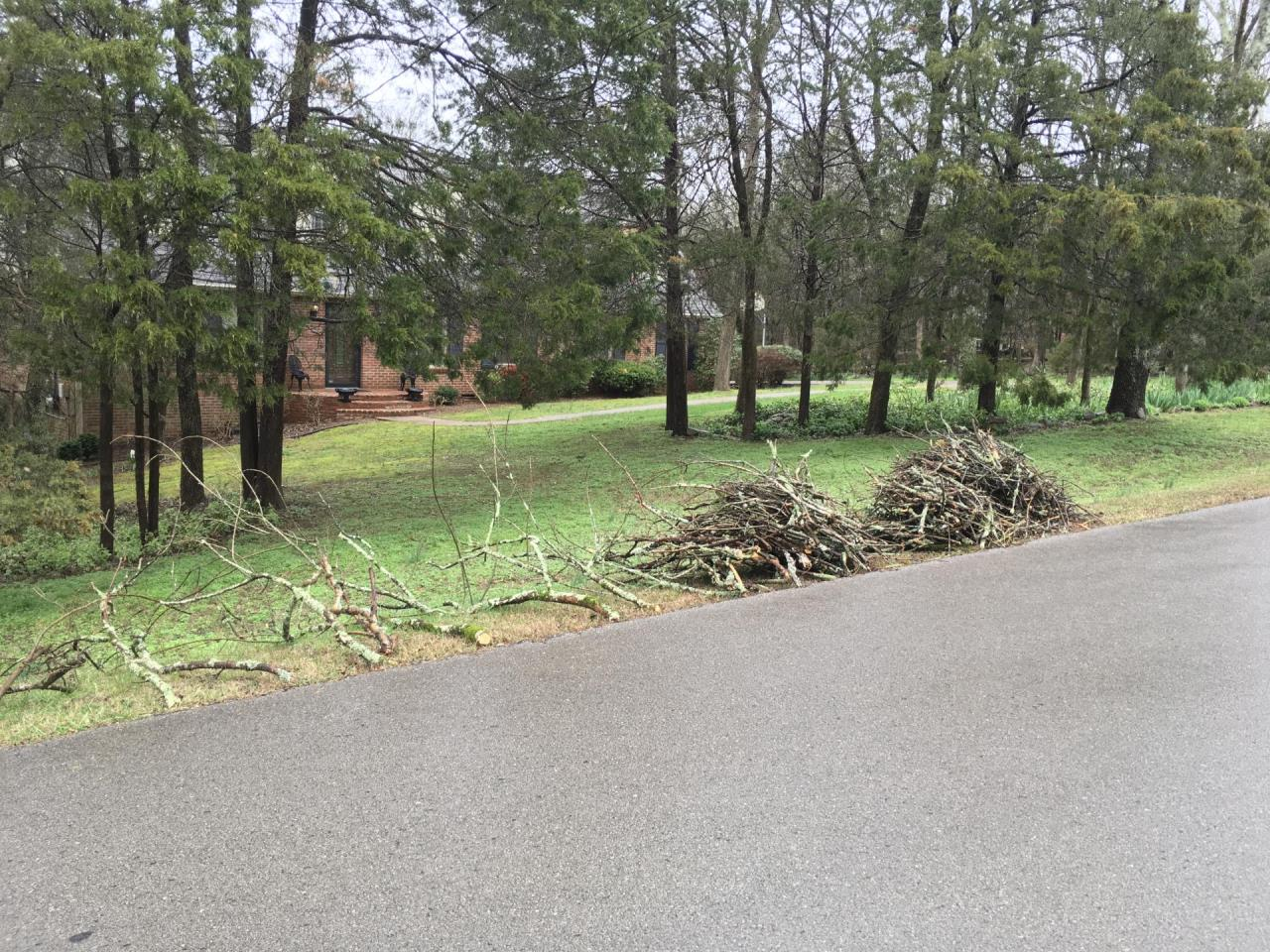 pile of debris sitting on side of yard