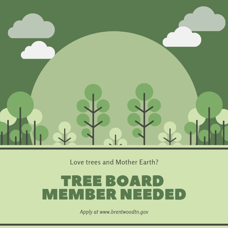 image of trees and words Tree Board member needed