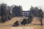Green Pastures/Hadleywood T