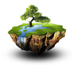 Environmental Stewardship image